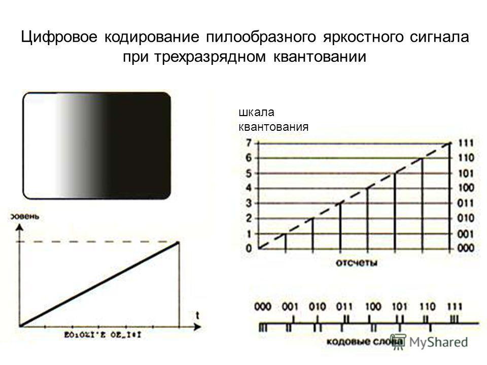 Цифровое кодирование пилообразного яркостного сигнала при трехразрядном квантовании шкала квантования