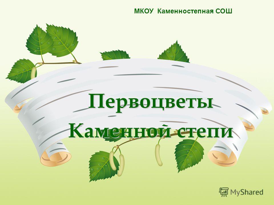 Первоцветы Каменной степи МКОУ Каменностепная СОШ