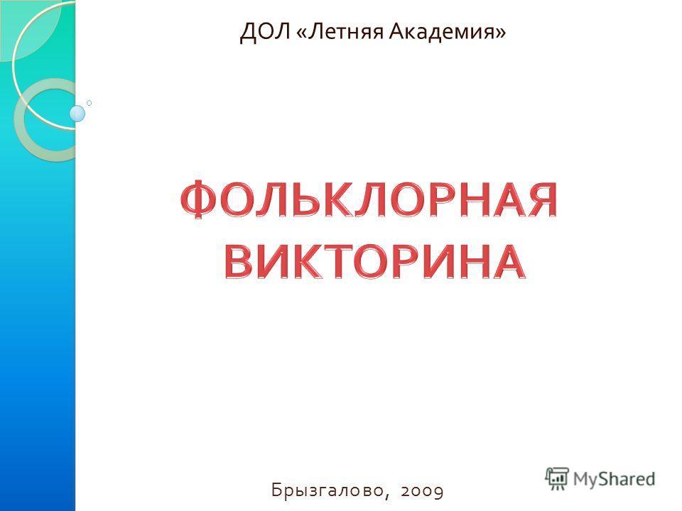 ДОЛ « Летняя Академия » Брызгалово, 2009