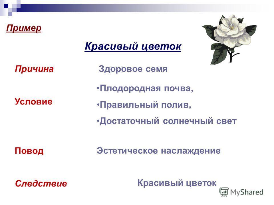 Пример Красивый цветок Причина Условие Повод Следствие Здоровое семя Плодородная почва, Правильный полив, Достаточный солнечный свет Эстетическое наслаждение Красивый цветок