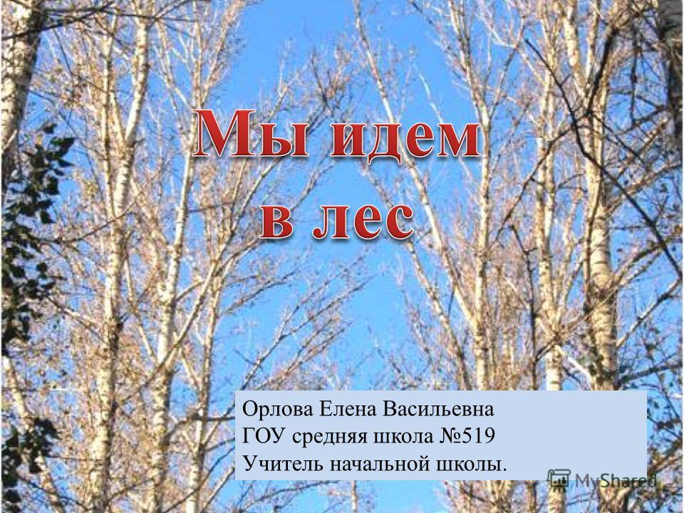 Орлова Елена Васильевна ГОУ средняя школа 519 Учитель начальной школы.