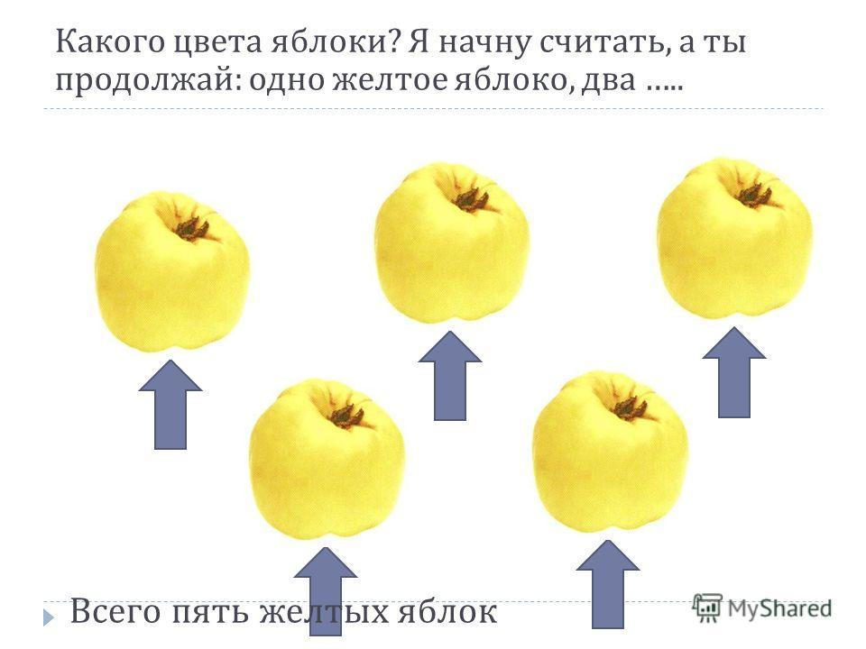 Какого цвета яблоки ? Я начну считать, а ты продолжай : одно желтое яблоко, два ….. Всего пять желтых яблок