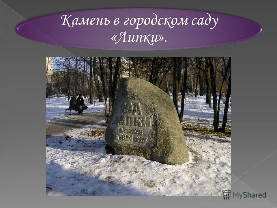 Камень в городском саду «Липки».