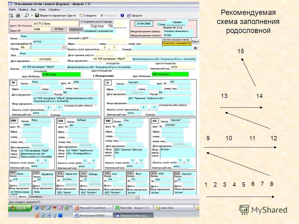 Рекомендуемая схема заполнения родословной 12345 6 7 8 9101112 1314 15