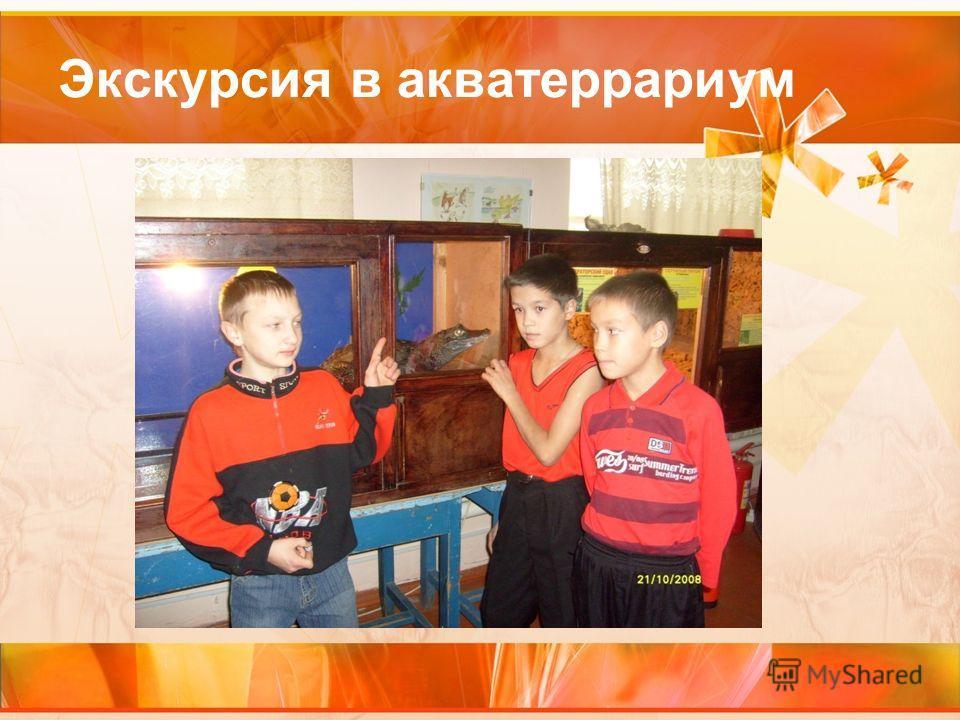 Экскурсия в акватеррариум