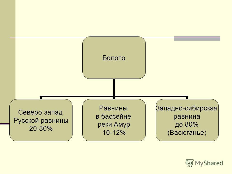 Болото Северо-запад Русской равнины 20-30% Равнины в бассейне реки Амур 10-12% Западно-сибирская равнина до 80% (Васюганье)