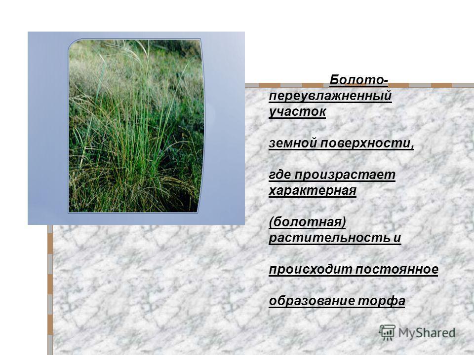 Болото- переувлажненный участок земной поверхности, где произрастает характерная (болотная) растительность и происходит постоянное образование торфа