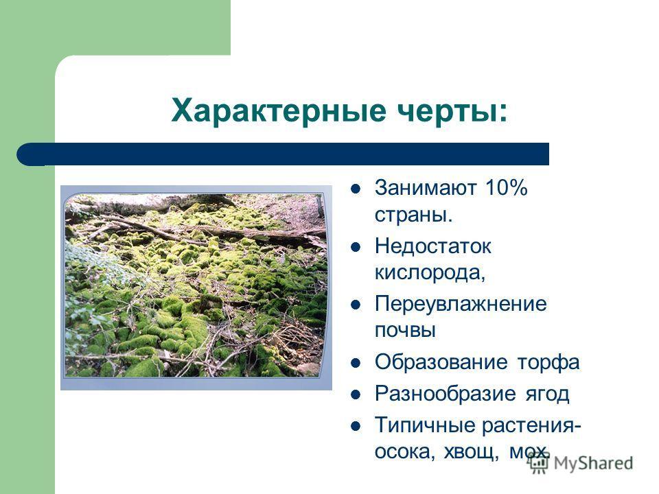 Характерные черты: Занимают 10% страны. Недостаток кислорода, Переувлажнение почвы Образование торфа Разнообразие ягод Типичные растения- осока, хвощ, мох.