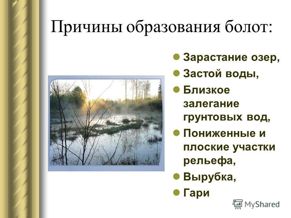 Причины образования болот: Зарастание озер, Застой воды, Близкое залегание грунтовых вод, Пониженные и плоские участки рельефа, Вырубка, Гари