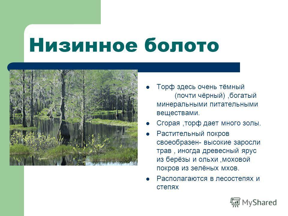 Низинное болото Торф здесь очень тёмный (почти чёрный),богатый минеральными питательными веществами. Сгорая,торф дает много золы. Растительный покров своеобразен- высокие заросли трав, иногда древесный ярус из берёзы и ольхи,моховой покров из зелёных