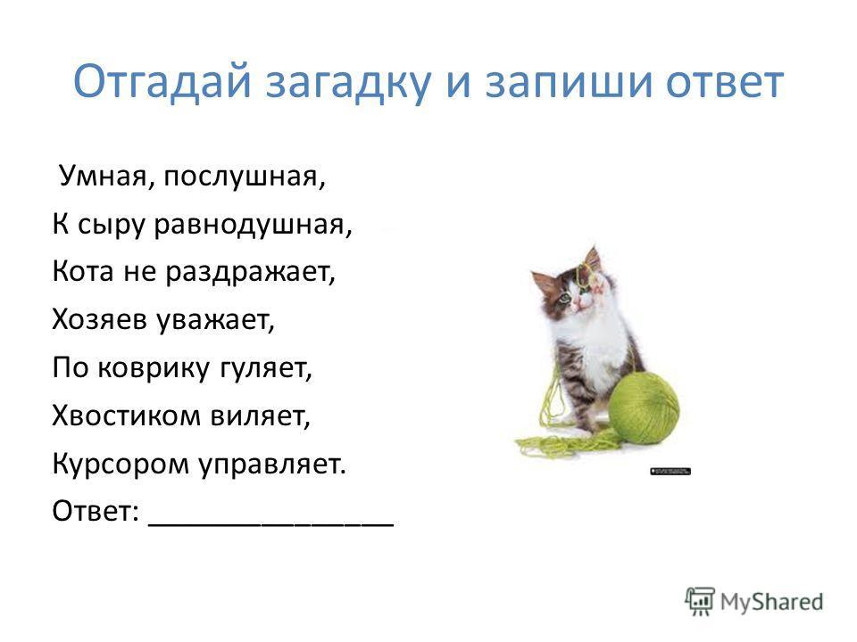 Отгадай загадку и запиши ответ Умная, послушная, К сыру равнодушная, Кота не раздражает, Хозяев уважает, По коврику гуляет, Хвостиком виляет, Курсором управляет. Ответ: _______________