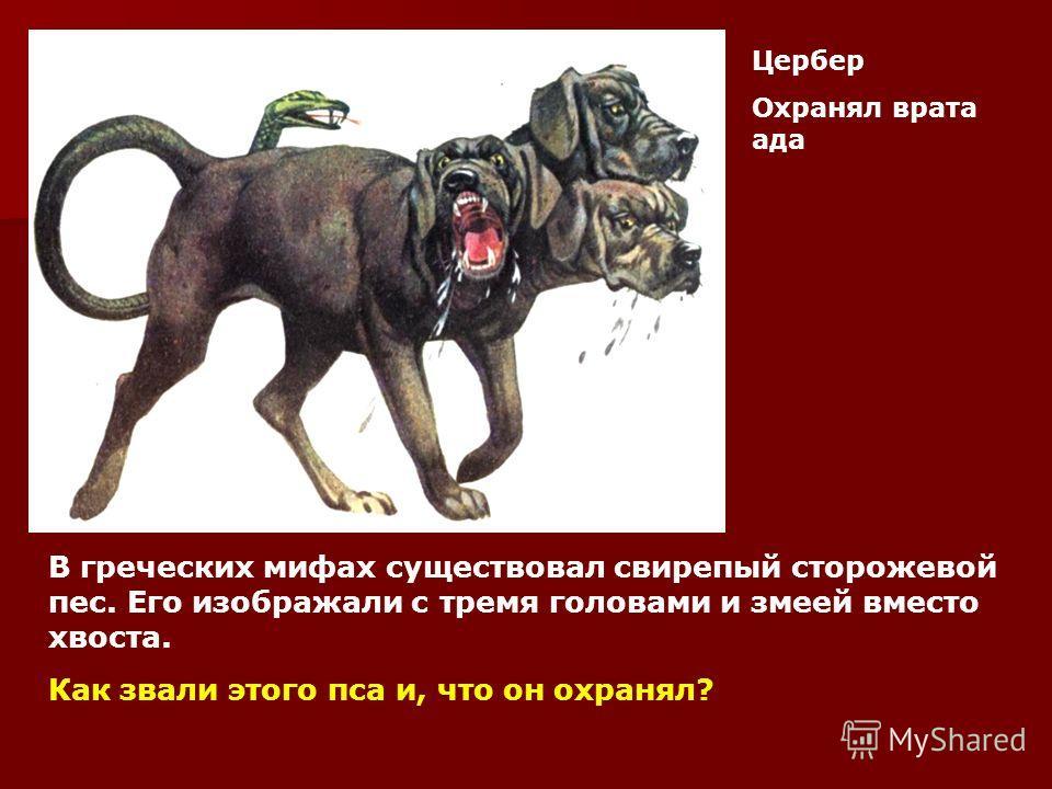 В греческих мифах существовал свирепый сторожевой пес. Его изображали с тремя головами и змеей вместо хвоста. Как звали этого пса и, что он охранял? Цербер Охранял врата ада