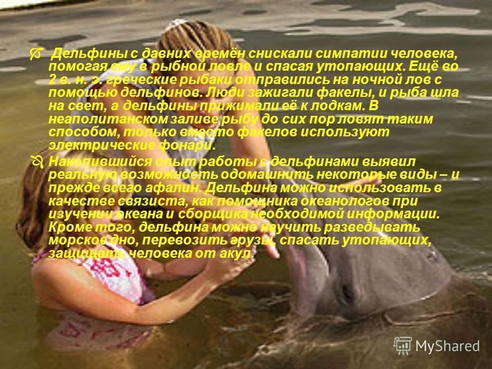 Дельфины с давних времён снискали симпатии человека, помогая ему в рыбной ловле и спасая утопающих. Ещё во 2 в. н. э. греческие рыбаки отправились на ночной лов с помощью дельфинов. Люди зажигали факелы, и рыба шла на свет, а дельфины прижимали её к