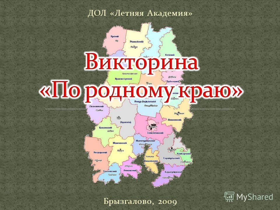 ДОЛ «Летняя Академия» Брызгалово, 2009