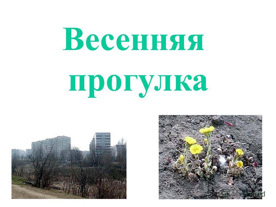 nasekomih-vesna-urok-prezentatsiya-2-klass-perspektiva-literature