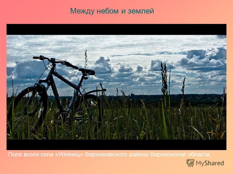 Между небом и землей Поля возле села «Углянец» Верхнехавского района Воронежской области.