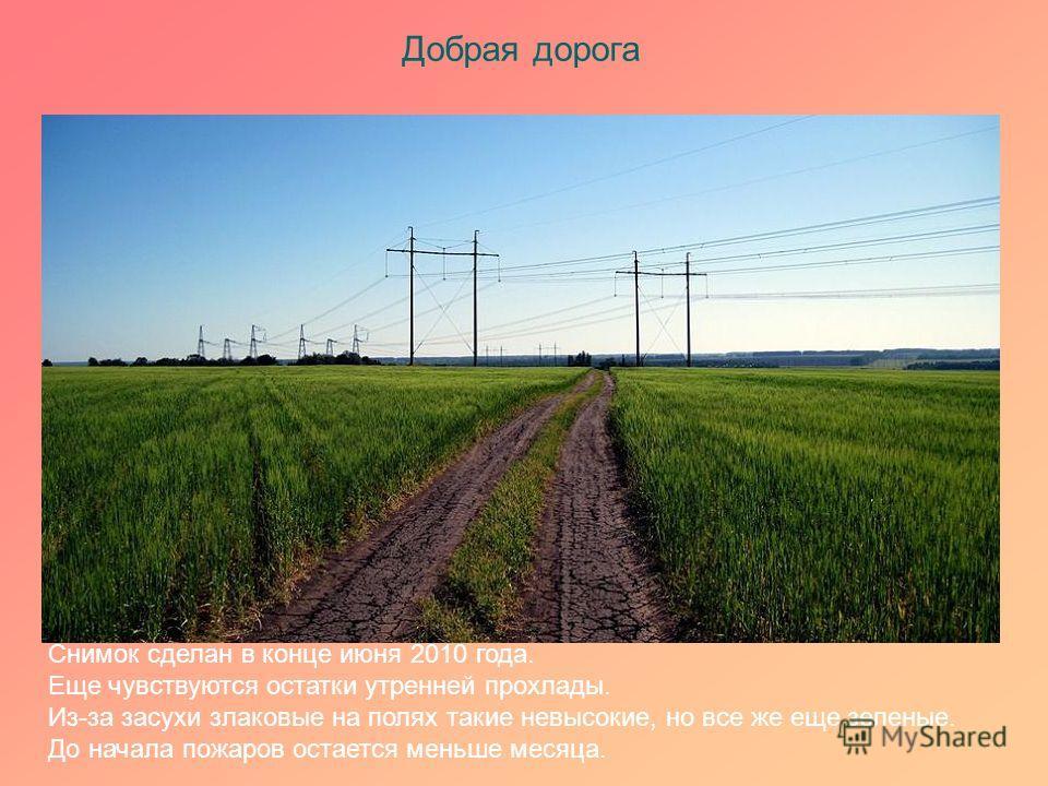 Добрая дорога Снимок сделан в конце июня 2010 года. Еще чувствуются остатки утренней прохлады. Из-за засухи злаковые на полях такие невысокие, но все же еще зеленые. До начала пожаров остается меньше месяца.