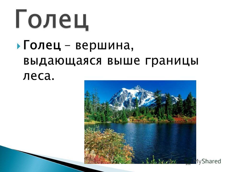 Голец – вершина, выдающаяся выше границы леса.