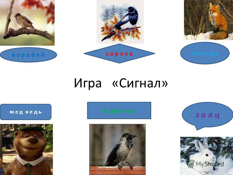 Игра «Сигнал» в о р о б е й л и с и ц а м е д в е д ь с о р о к а з а я ц в ор о н а