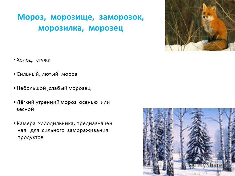 Мороз, морозище, заморозок, морозилка, морозец Холод, стужа Сильный, лютый мороз Небольшой,слабый морозец Лёгкий утренний мороз осенью или весной Камера холодильника, предназначен ная для сильного замораживания продуктов