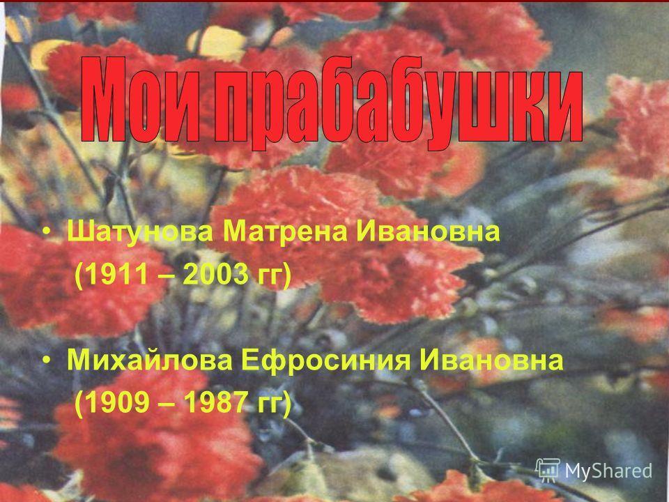 Родился в 1908 году в деревне Ятманкино Моргаушского района. Женился на моей прабабушке Михайловой Ефросинии Ивановне. У них росла дочь Клавдия (моя бабушка). Он тоже ушел на войну в весной 1942 года. Прадед был сапером и воевал на Украинском фронте.
