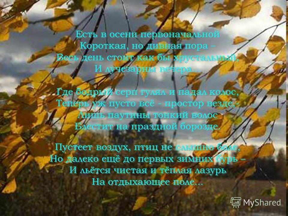 Мясникова Т. И. Гимназия 66 г. Санкт-Петербурга ©2007, Мясникова Т. И.