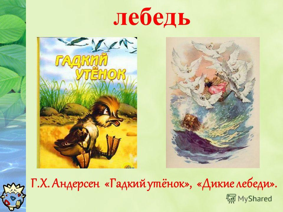 лебедь Г.Х. Андерсен «Гадкий утёнок», «Дикие лебеди».