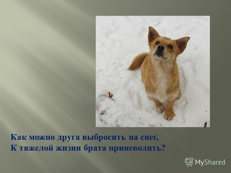 Как можно друга выбросить на снег, К тяжелой жизни брата приневолить ?
