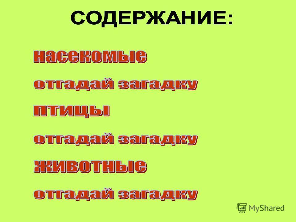 Преподаватель Комиссарова М.В.