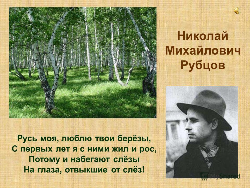 Николай Михайлович Рубцов Русь моя, люблю твои берёзы, С первых лет я с ними жил и рос, Потому и набегают слёзы На глаза, отвыкшие от слёз!