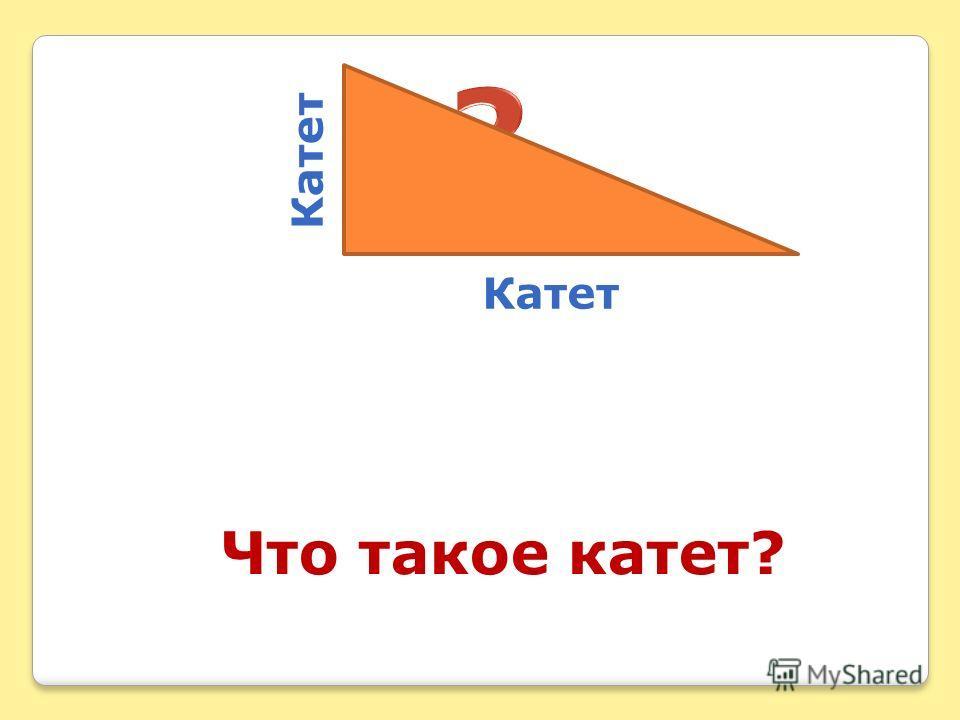 Что такое катет? Катет