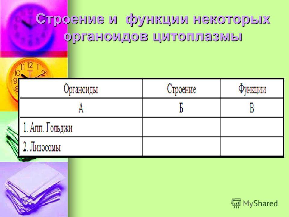 Строение и функции некоторых органоидов цитоплазмы