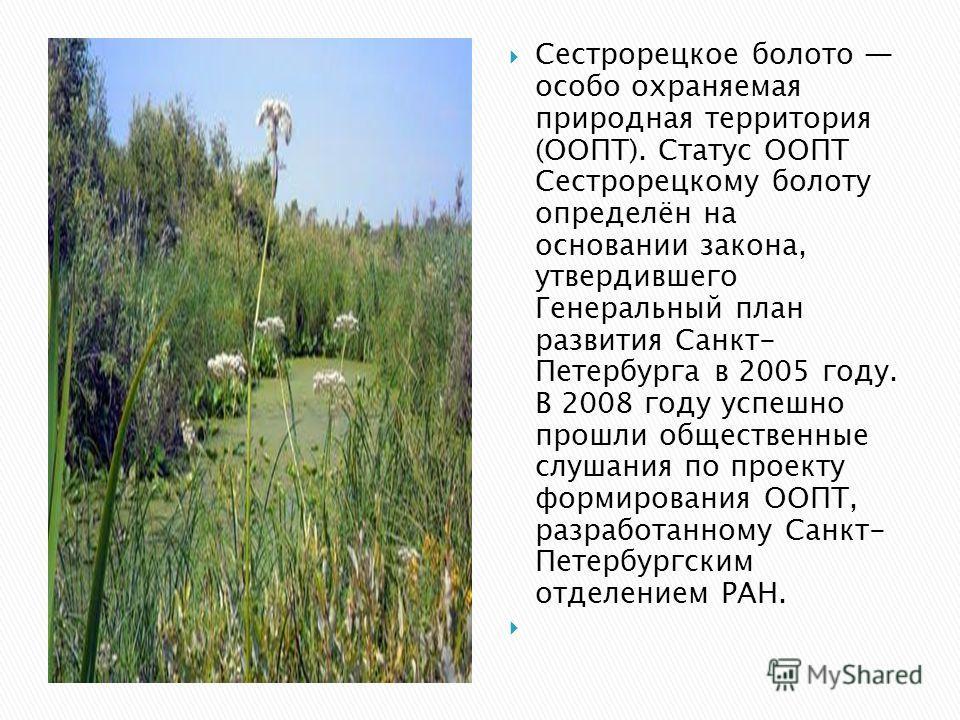 Сестрорецкое болото особо охраняемая природная территория (ООПТ). Статус ООПТ Сестрорецкому болоту определён на основании закона, утвердившего Генеральный план развития Санкт- Петербурга в 2005 году. В 2008 году успешно прошли общественные слушания п