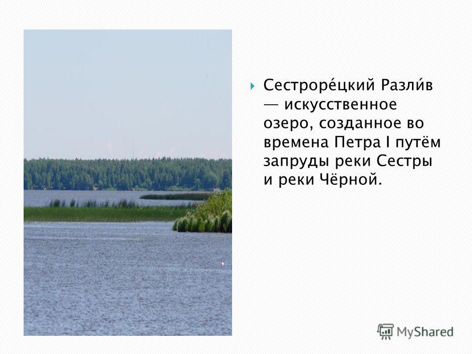 Сестроре́цкий Разли́в искусственное озеро, созданное во времена Петра I путём запруды реки Сестры и реки Чёрной.