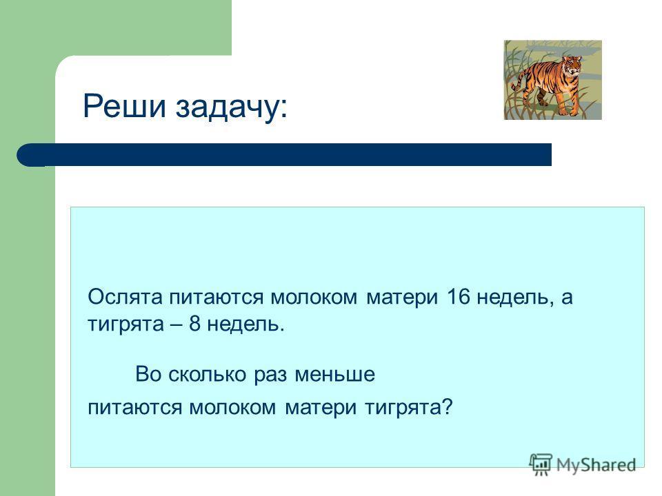 РЕШЕНИЕ ЗАДАЧ © ГУСАКОВА Ю.А. Учитель начальной школы Гимназия 446 Санкт - Петербург 2007