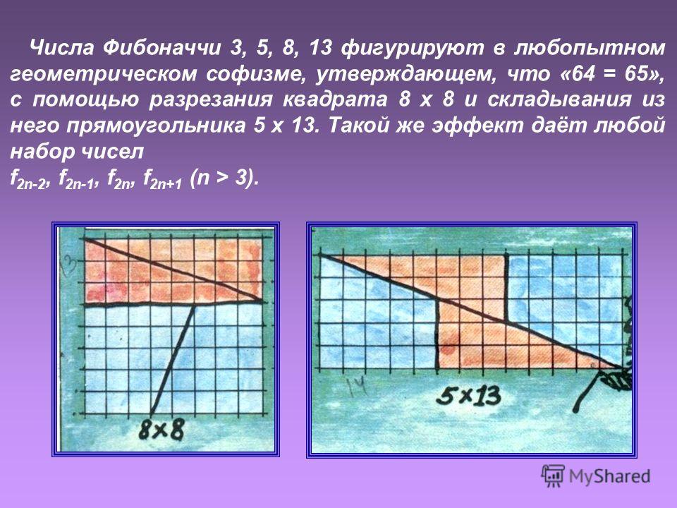 Числа Фибоначчи 3, 5, 8, 13 фигурируют в любопытном геометрическом софизме, утверждающем, что «64 = 65», с помощью разрезания квадрата 8 х 8 и складывания из него прямоугольника 5 х 13. Такой же эффект даёт любой набор чисел f 2n-2, f 2n-1, f 2n, f 2