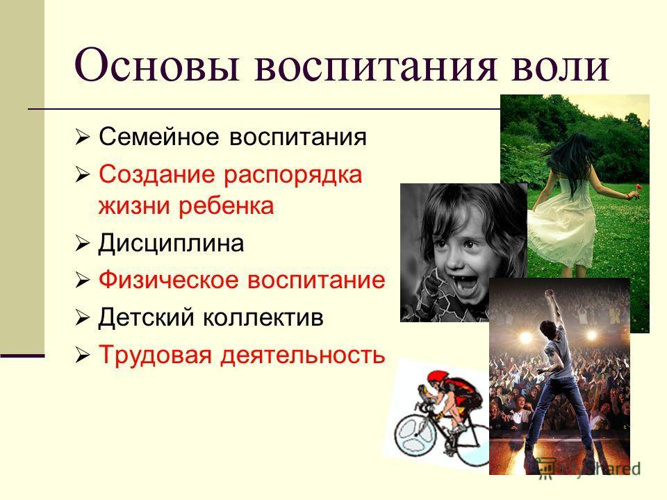 Основы воспитания воли Семейное воспитания Создание распорядка жизни ребенка Дисциплина Физическое воспитание Детский коллектив Трудовая деятельность