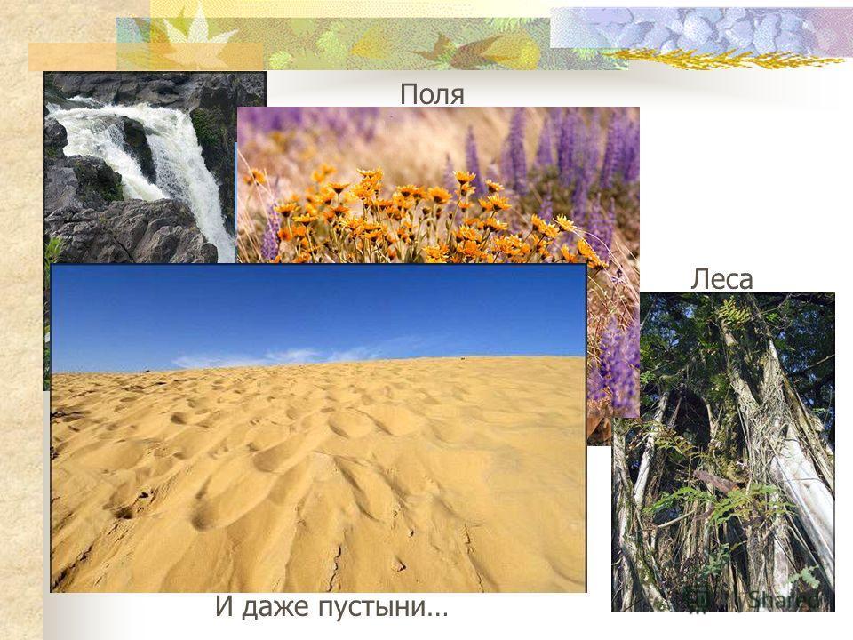 Реки Горы Леса Поля И даже пустыни…
