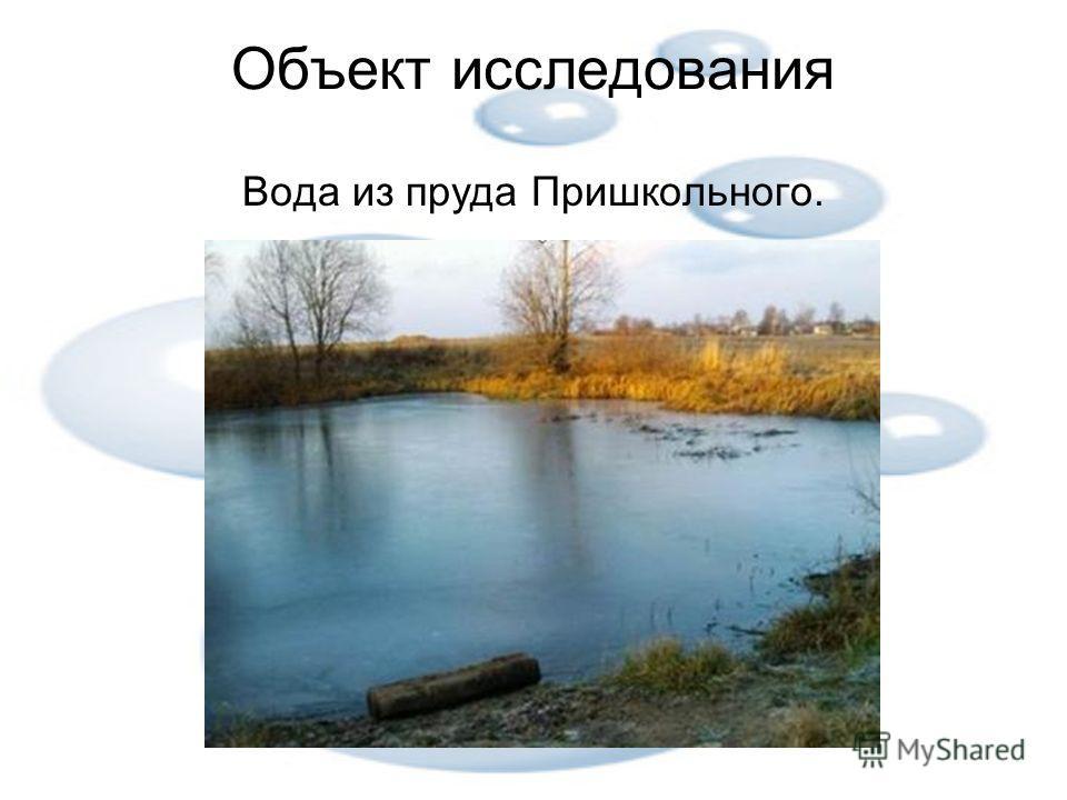 Объект исследования Вода из пруда Пришкольного.