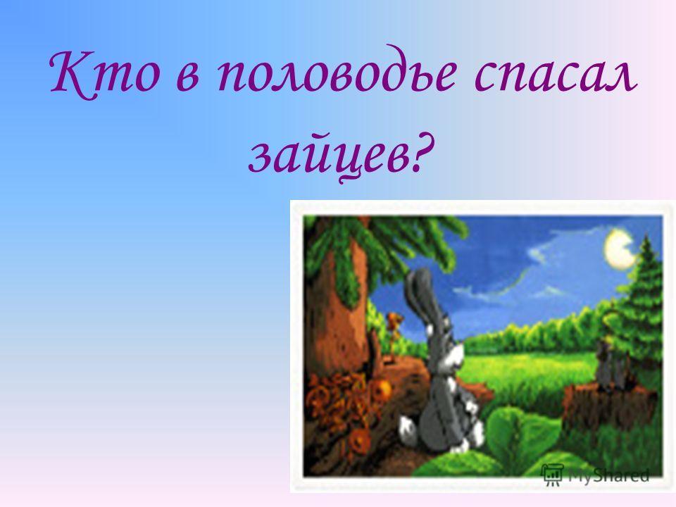Кто в половодье спасал зайцев?