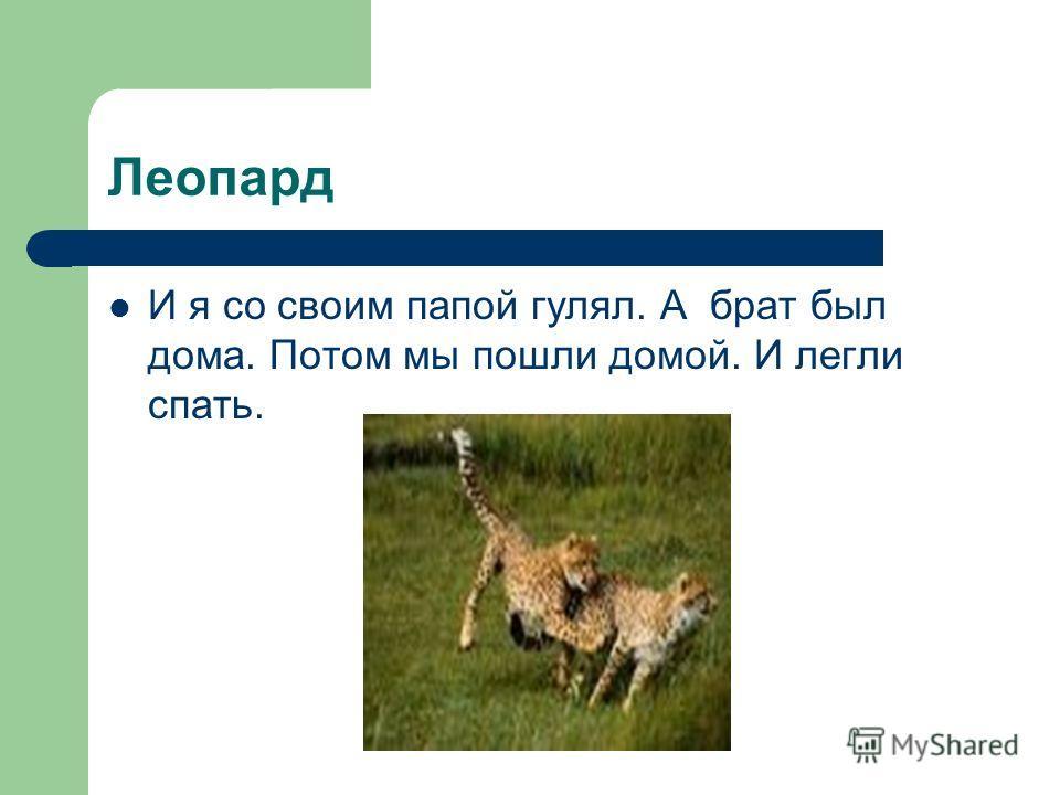 Леопард И я со своим папой гулял. А брат был дома. Потом мы пошли домой. И легли спать.