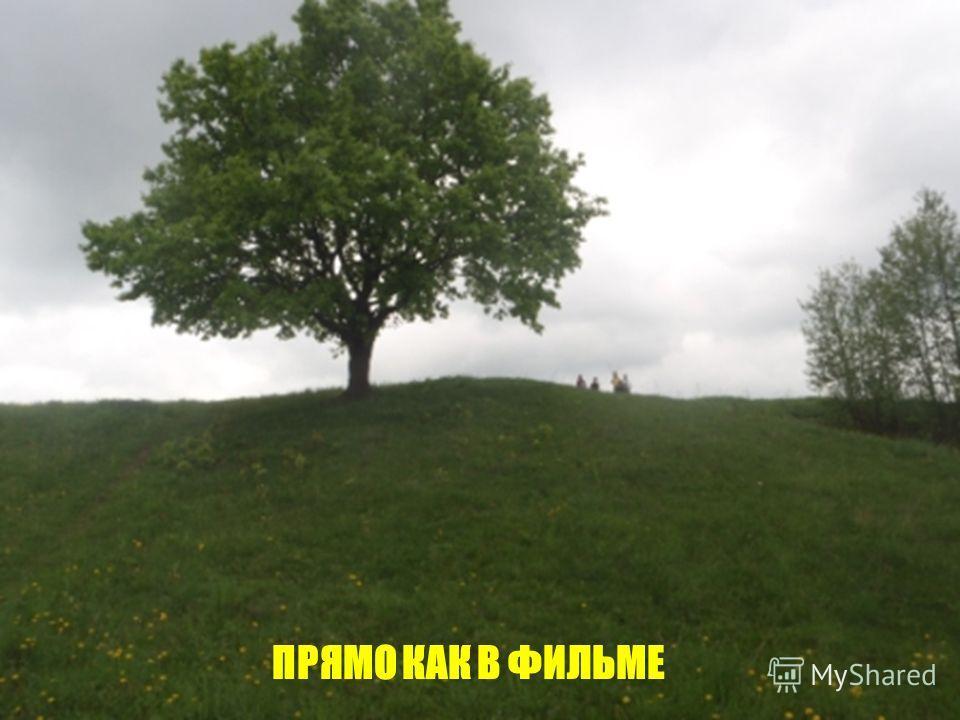 ПРЯМО КАК В ФИЛЬМЕ