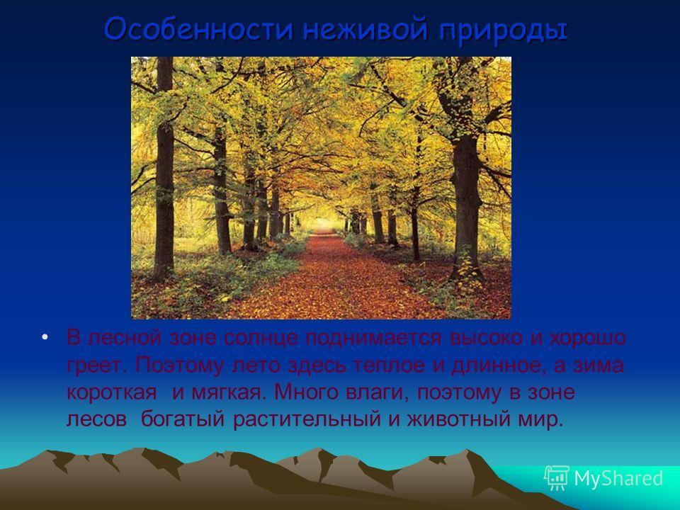 Природные зоны Зона лесов 1. Особенности неживой природы. 2. Особенности живой природы. 3. Взаимосвязи. 4. Значение природы для человека и её использование. 5. Охрана лесной зоны.