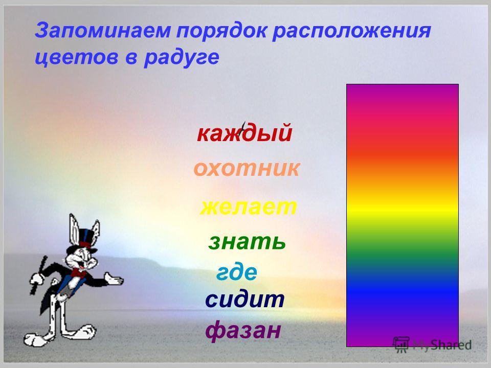 Запоминаем порядок расположения цветов в радуге каждый охотник желает знать где сидит фазан
