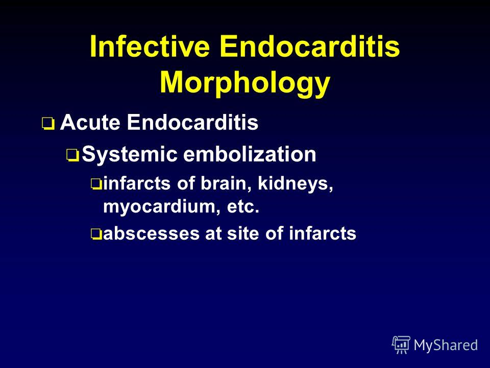Infective Endocarditis Morphology o Acute Endocarditis o Systemic embolization o infarcts of brain, kidneys, myocardium, etc. o abscesses at site of infarcts
