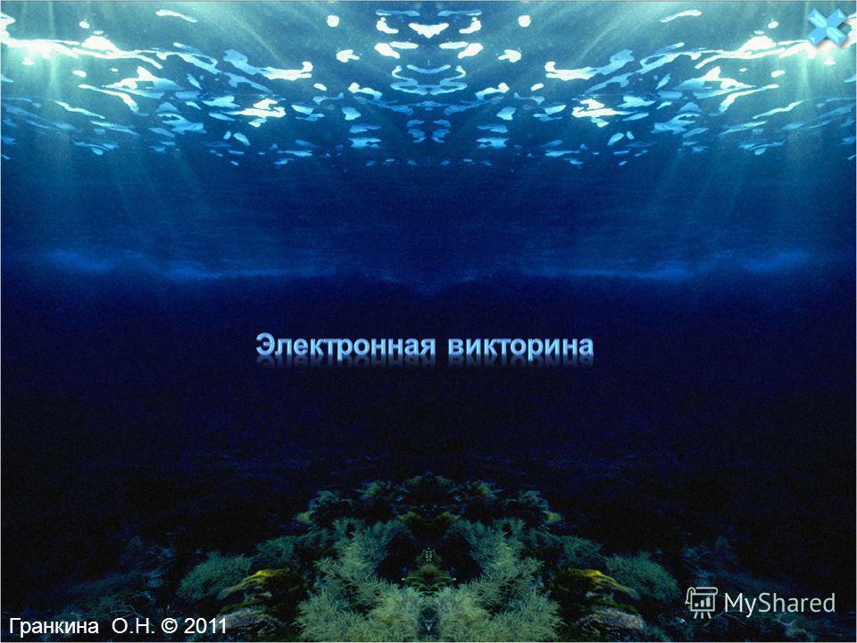 Гранкина О.Н. © 2011