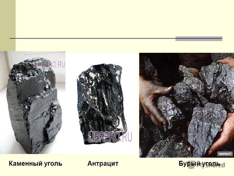 Каменный уголь Антрацит Бурый уголь