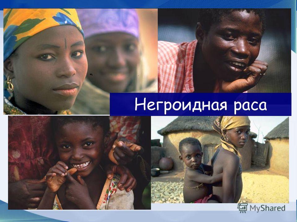 Расы- группы людей, которые отличаются от других своими внешними признаками европеоидная негроидная монголоидная
