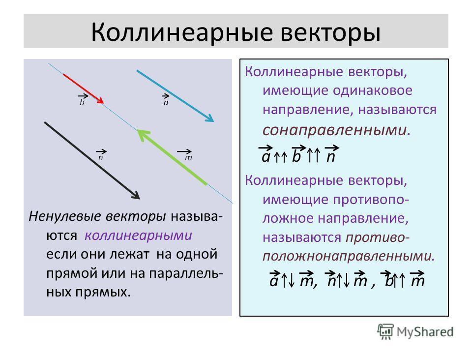 Коллинеарные векторы b a n m Ненулевые векторы называ- ются коллинеарными если они лежат на одной прямой или на параллель- ных прямых. Коллинеарные векторы, имеющие одинаковое направление, называются сонаправленными. a b n Коллинеарные векторы, имеющ