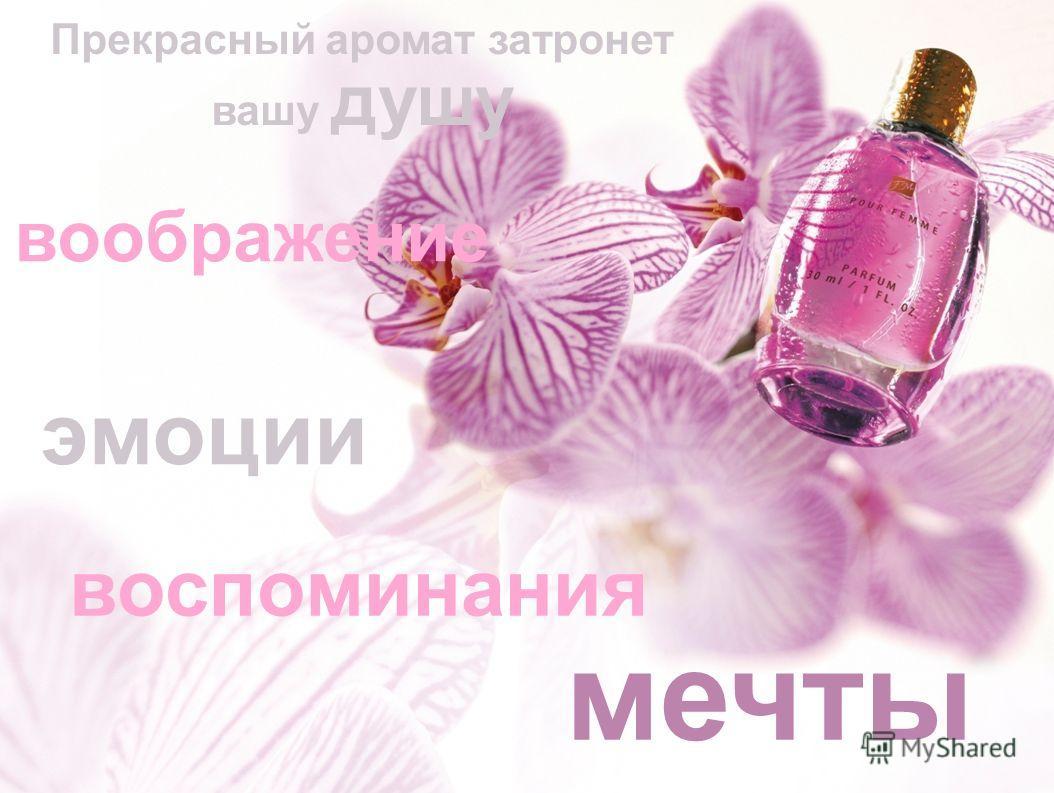воспоминания мечты воображение эмоции Прекрасный аромат затронет вашу душу
